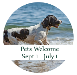 Pets Welcome: Sept 1 - July 1